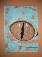 Reptile's Eye by Jreeds
