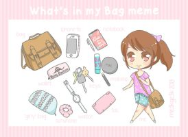 What's in my Bag meme by meekgeek