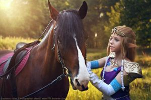 The Legend of Zelda cosplay by RubeeAmadare