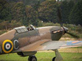 Hurricane Taxiing by amipal