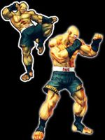 Skin street fighter 4 sagat v2 by popodu31
