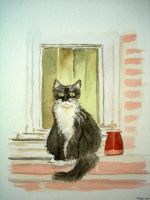 Chaton by manette64