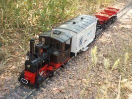 Light Mixed Freight by Sampug394
