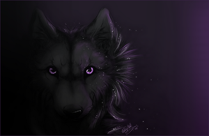 KP.:In The Darkness:. by WhiteSpiritWolf