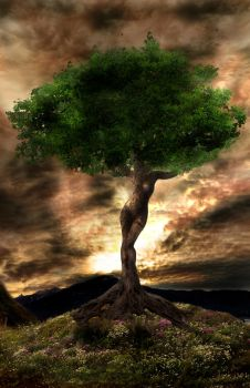 Tree of Life by ngel-sp