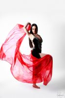 Belly Dancer Veil Stock 12 by LoryenZeytin