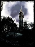 The Tower by zaleone