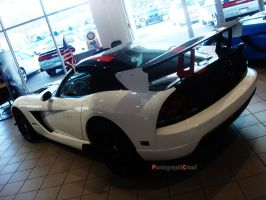 Viper ACR II by PhotographiCreed