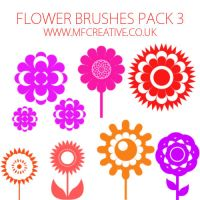 Flower Brushes Pack 3 by mfcreative