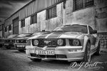MuSTaNG GT II by DaYBeaTxXx