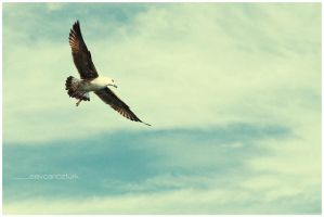 freedom 2 by sevCANN