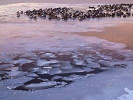 Crack in the Ice by PaulGana