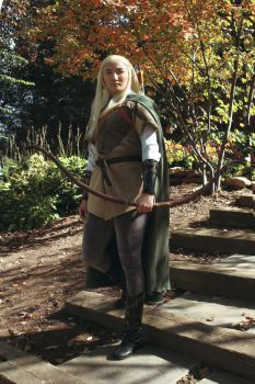 LoTR: Legolas 2 by Stealthos-Aurion