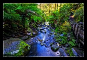 Streams of Erskine Falls by WiDoWm4k3r