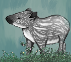 Tapirs are Cool by AnnaNM