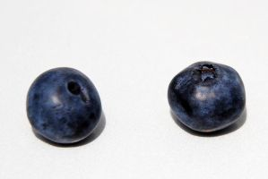 blueberries 4 by LucieG-Stock