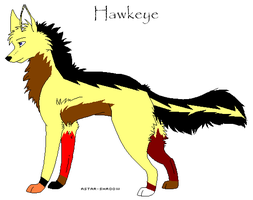 Hawkeye Breedable by xMaikoWolfx