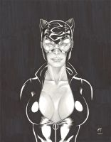CATWOMAN 'Pretty in Black' by daikkenaurora