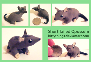 Short Tailed Opossum - GIFT by Bittythings
