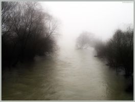 foggy river by metinisci