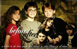 Harry Potter,Ron and Hermione by anaxcore