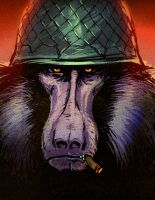 WORLD WAR BABOON by JohnBergin