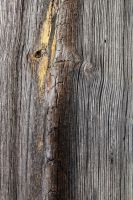 Barn Wood Texture 02 by Thy-Darkest-Hour