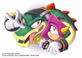 Vector and Espio by yuski