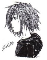 Zexion--Side Profile--Done by minnet