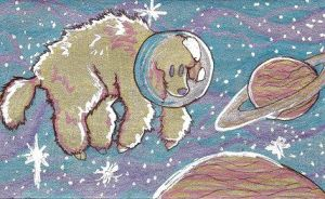 Poodle in Space by Bewildermunster