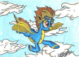 Soaring thru the sky by LyokoTravelsPegasus