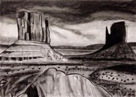 A desert in charcoal by Biselva