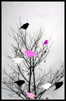 Pink Black n White Birds by ASHURII-sgtfunkytown