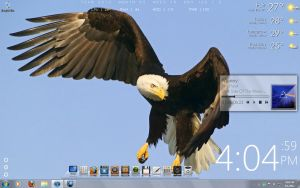 Eagle Eye by y2karthik