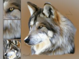 Smudge Painting - Wolf by Vivi-Design