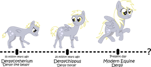 Evolution of Derpy by PinkiePirate