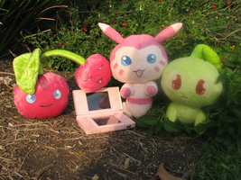 Poke' Plushies: The Gang by Avon-Delta