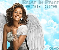 RIP Whitney Houston EMD by emdesignotr