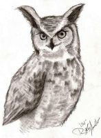 Great Horned by RoXas-AmaraOri