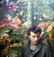 A Boy in Autumn I by Vive-Le-Rock
