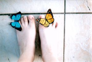 Butterflies falling at my feet by LeCoco