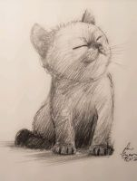 manditory daily cat sketch 614 by nosoart
