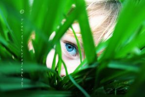 I See Little People by tracieteephotography