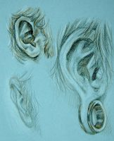 Ear Study by MachineGun-Baby