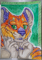 Colorful tiger aceo by nightspiritwing