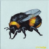 Bumble Bee by breakbot