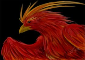 Rooster by linai