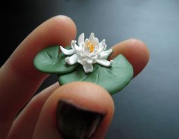 white water lily 2 by lily-inabottle