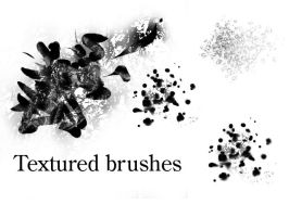 Brushes by Erikor