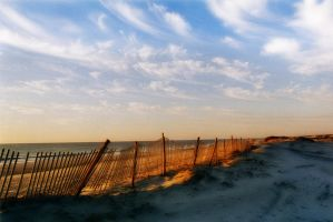 Assateague IV by touch-the-flame